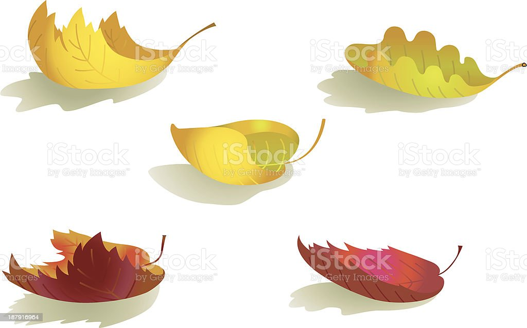 colored curled autumn leafs royalty-free stock vector art