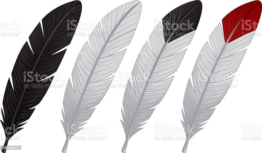 Colored Feathers vector art illustration