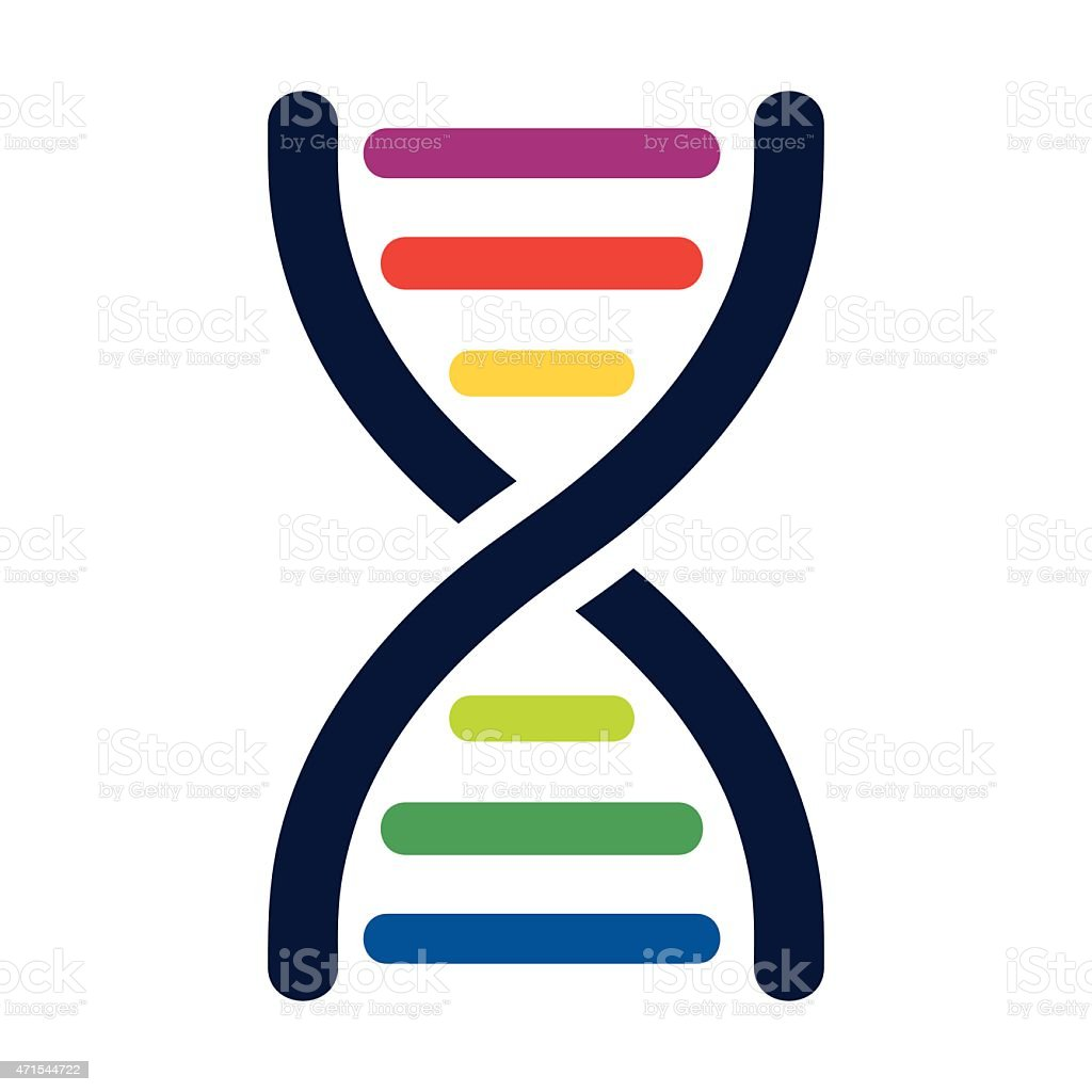 DNA colored strands - VECTOR vector art illustration