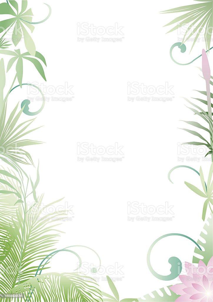 Colored Tropical frame vector art illustration