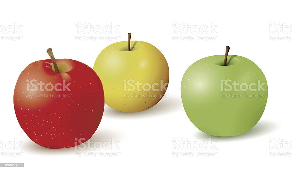 colorful apples royalty-free stock vector art