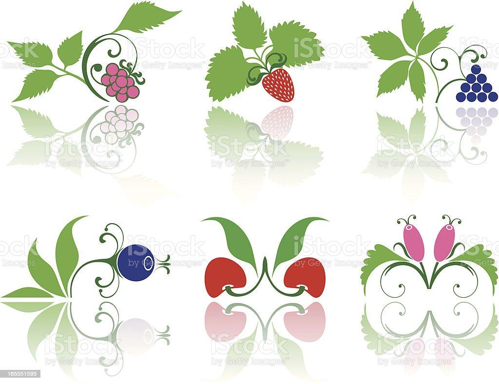Colorful berries set royalty-free stock vector art
