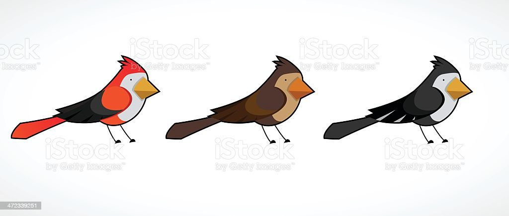 colorful bird collection royalty-free stock vector art