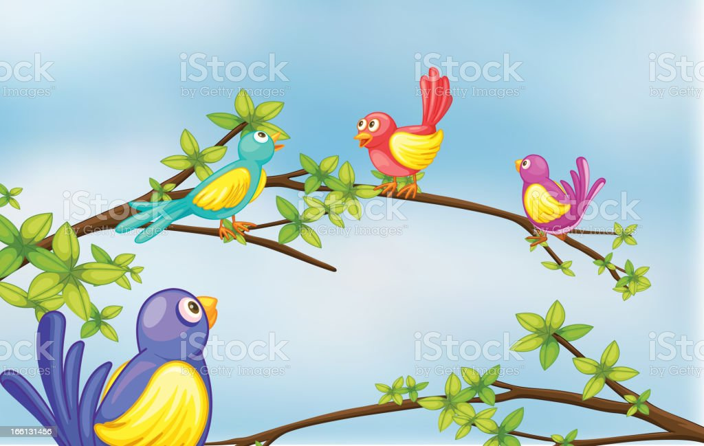 Colorful birds talking vector art illustration