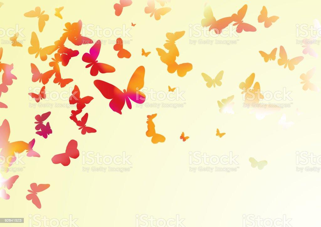 colorful butterflies vector art illustration