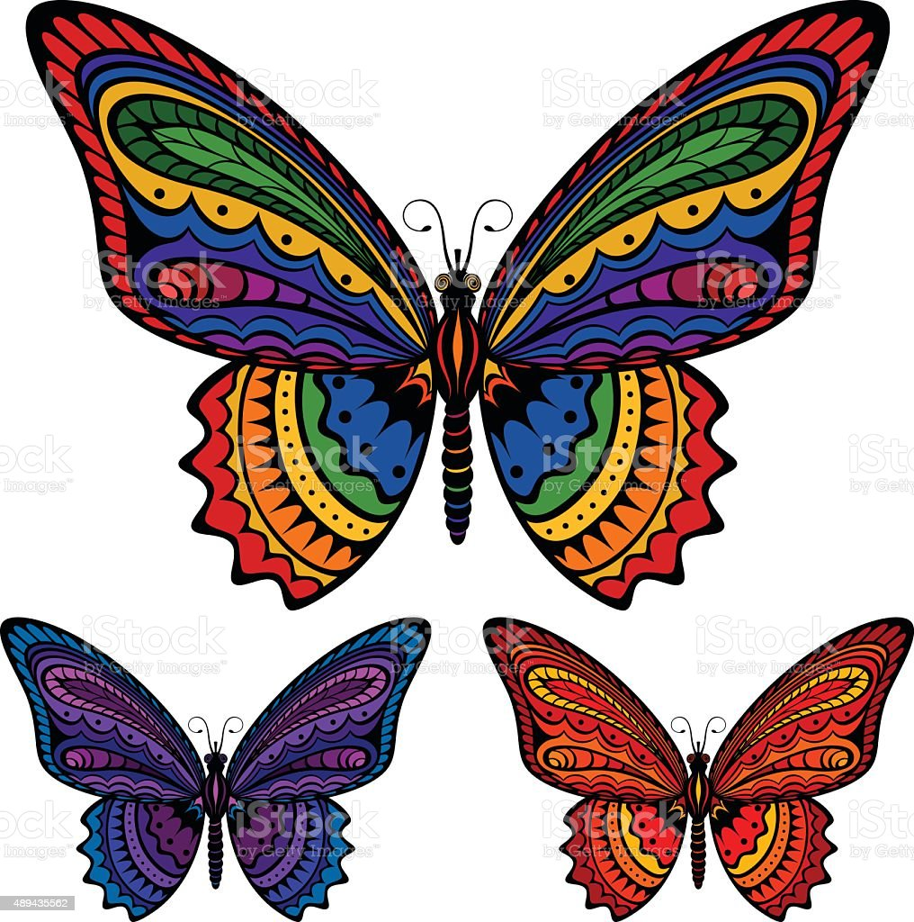 Colorful Butterfly vector art illustration
