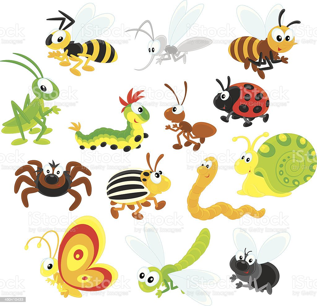 Colorful cartoon illustration of different insects vector art illustration