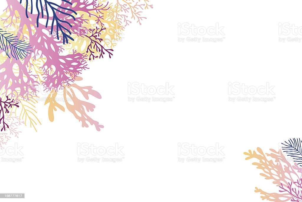 Colorful Coral Background vector art illustration
