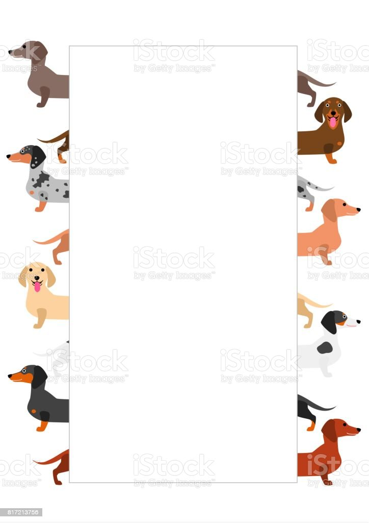 colorful Dachshund  group with white card on it vector art illustration