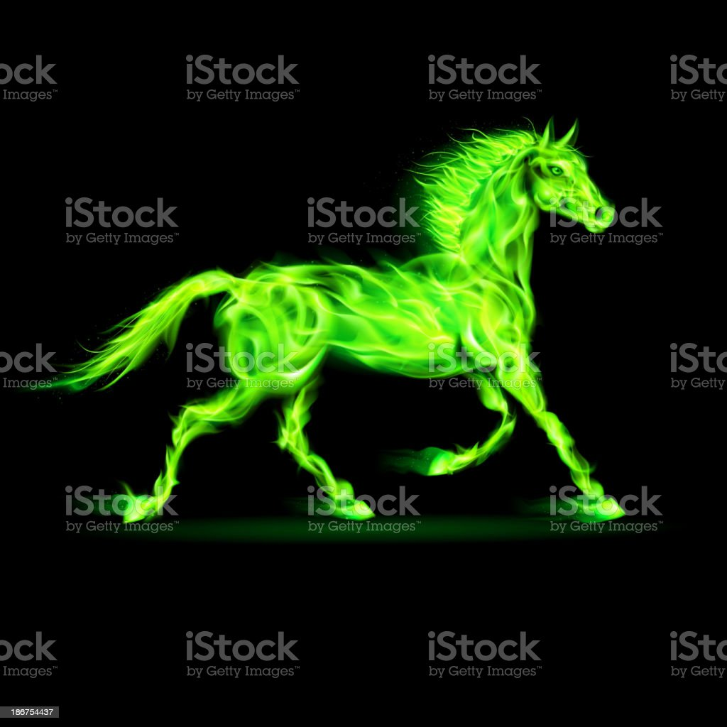 Colorful fire unicorn. vector art illustration