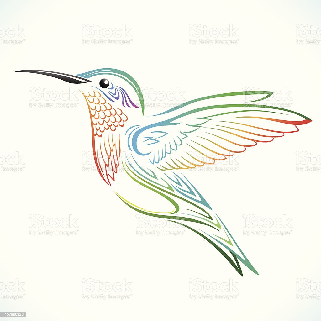 Colorful Humming bird vector art illustration