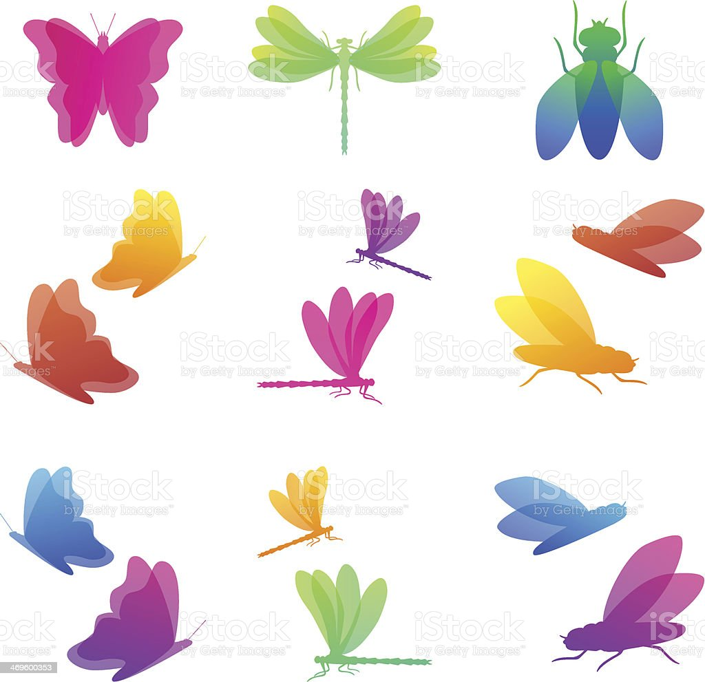 Colorful insects icon set vector art illustration