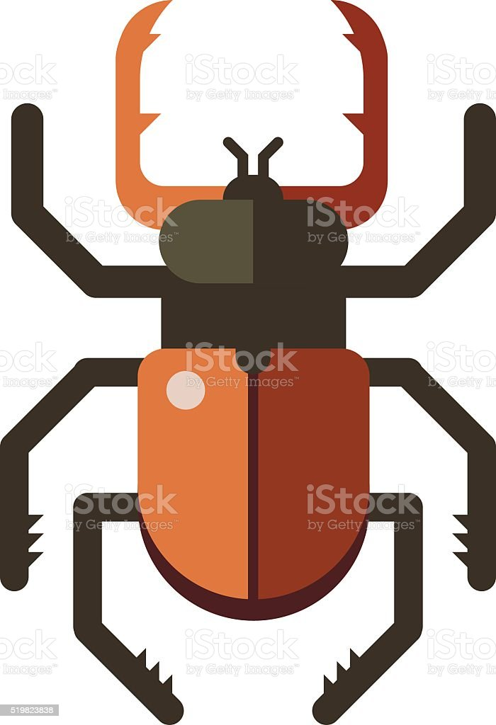 Colorful insects vector stag beetle vector art illustration