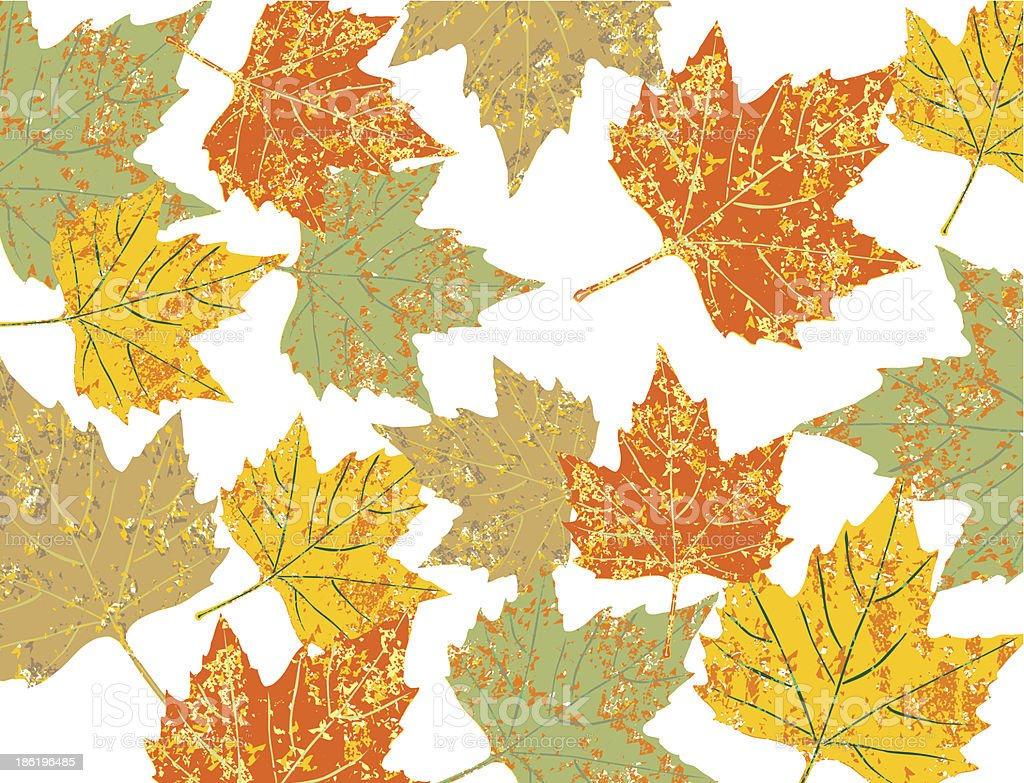 colorful maple leaves background royalty-free stock vector art