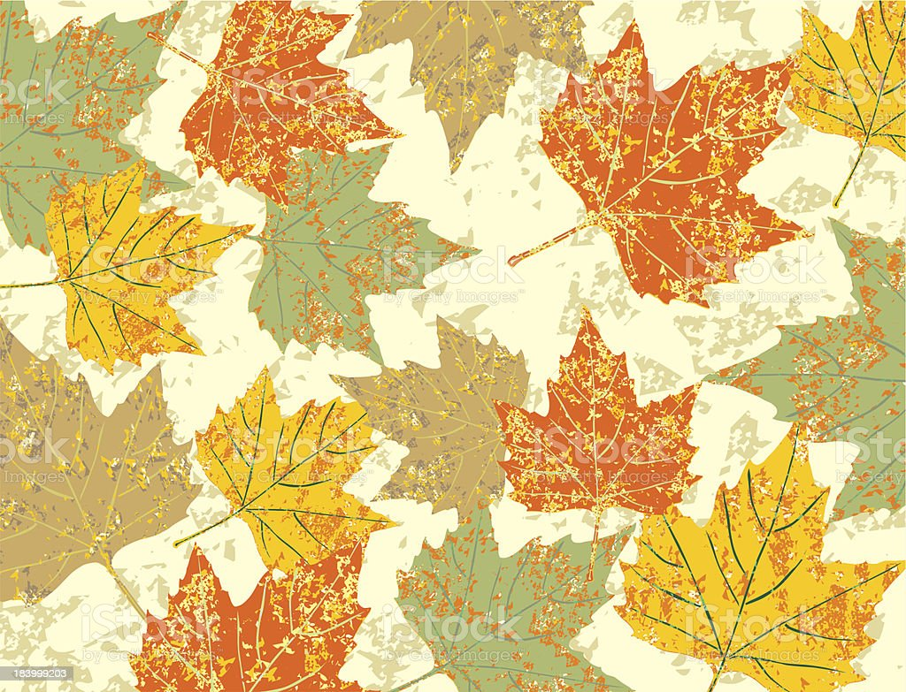 colorful maple leaves royalty-free stock vector art