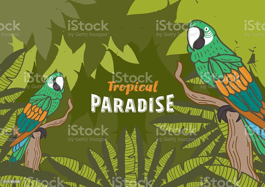 Colorful parrot and tropical paradise - freehand drawing illustration vector art illustration