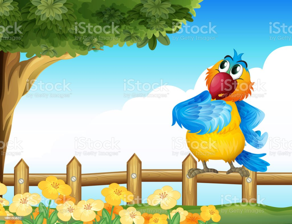 colorful parrot at the backyard royalty-free stock vector art