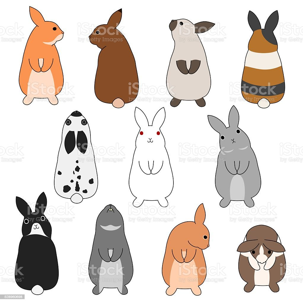 colorful rabbits set vector art illustration