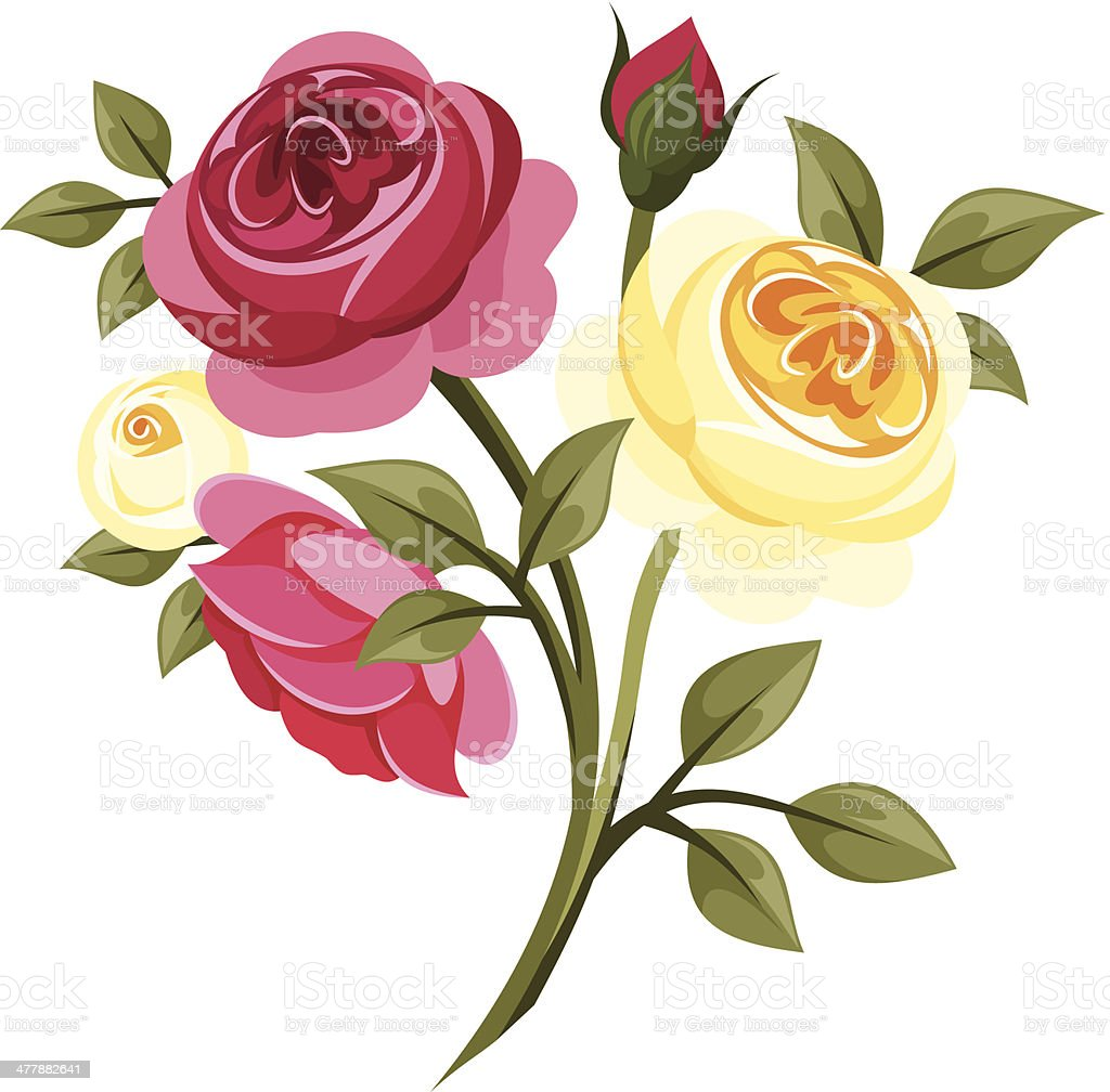 Colorful roses. Vector illustration. vector art illustration