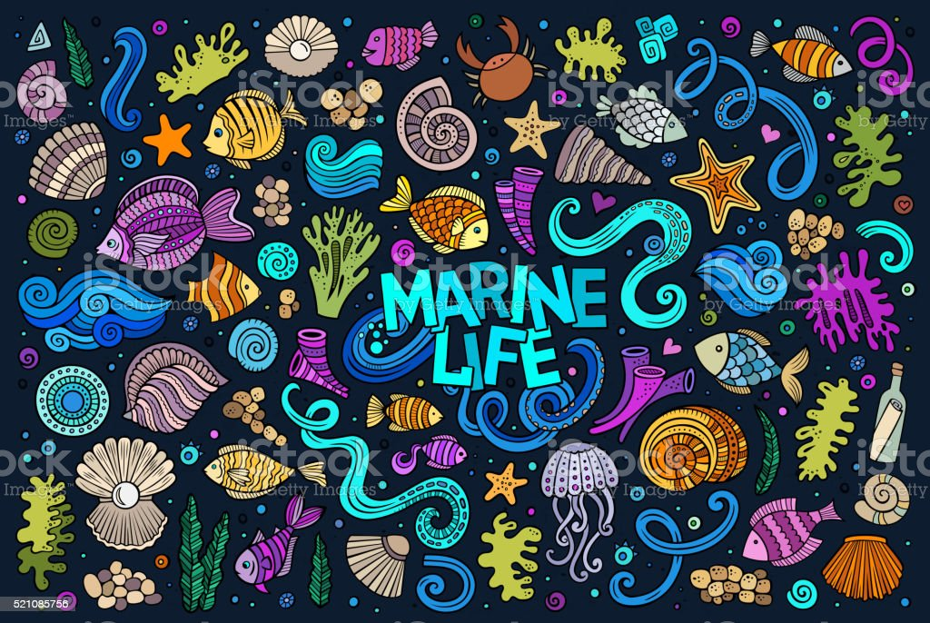 Colorful set of marine life objects vector art illustration