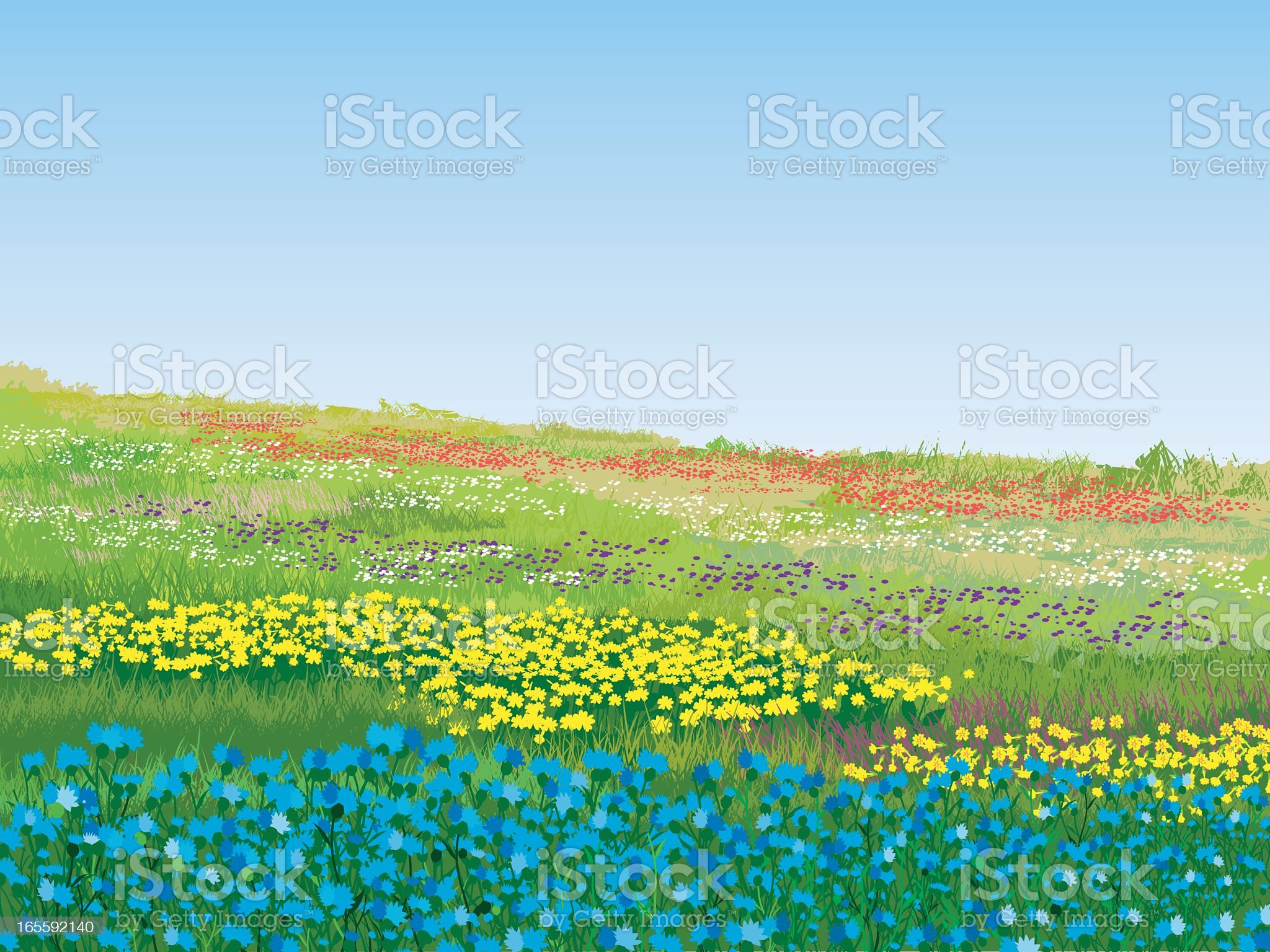 A colorful summer meadow on a nice day royalty-free stock vector art