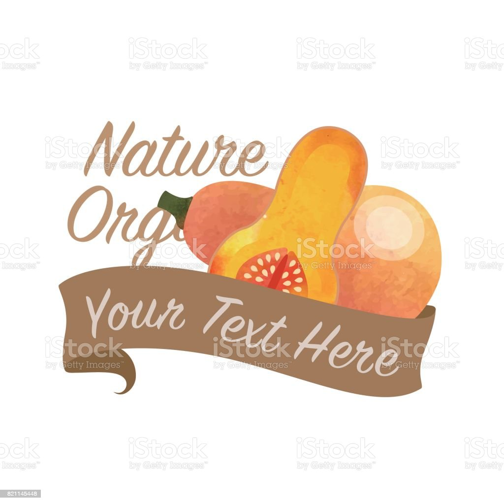 Colorful watercolor texture vector nature organic vegetable banner butternut squash vector art illustration