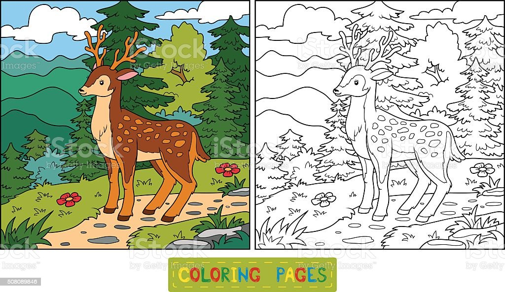 Zoology Coloring Book For Children Stock Vector Art 508089846 IStock