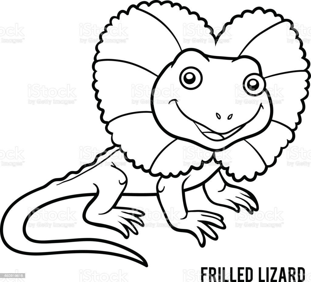 Coloring book, Frilled lizard vector art illustration