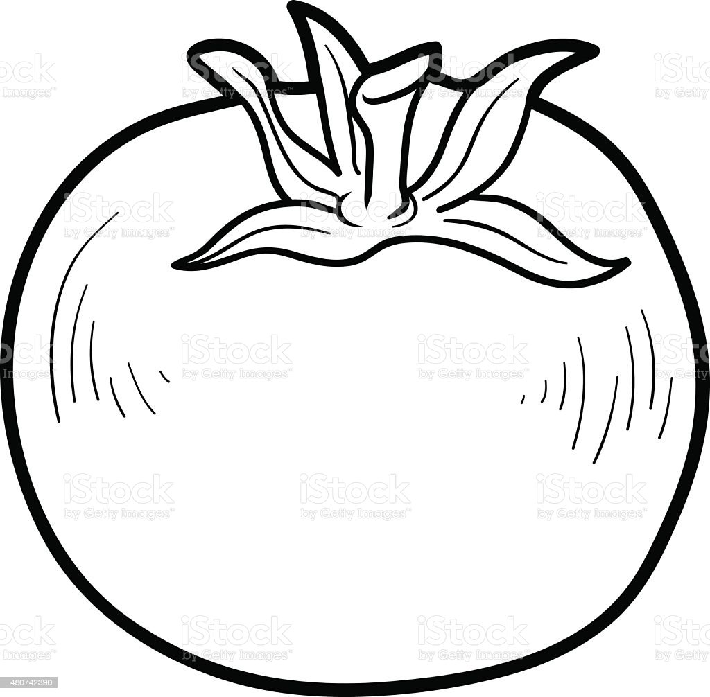 Coloring book pictures of vegetables - Coloring Book Fruits And Vegetables Tomato Royalty Free Stock Vector Art