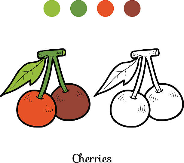 Coloring Book Fruits And Vegetables Cherry Vector Art Illustration
