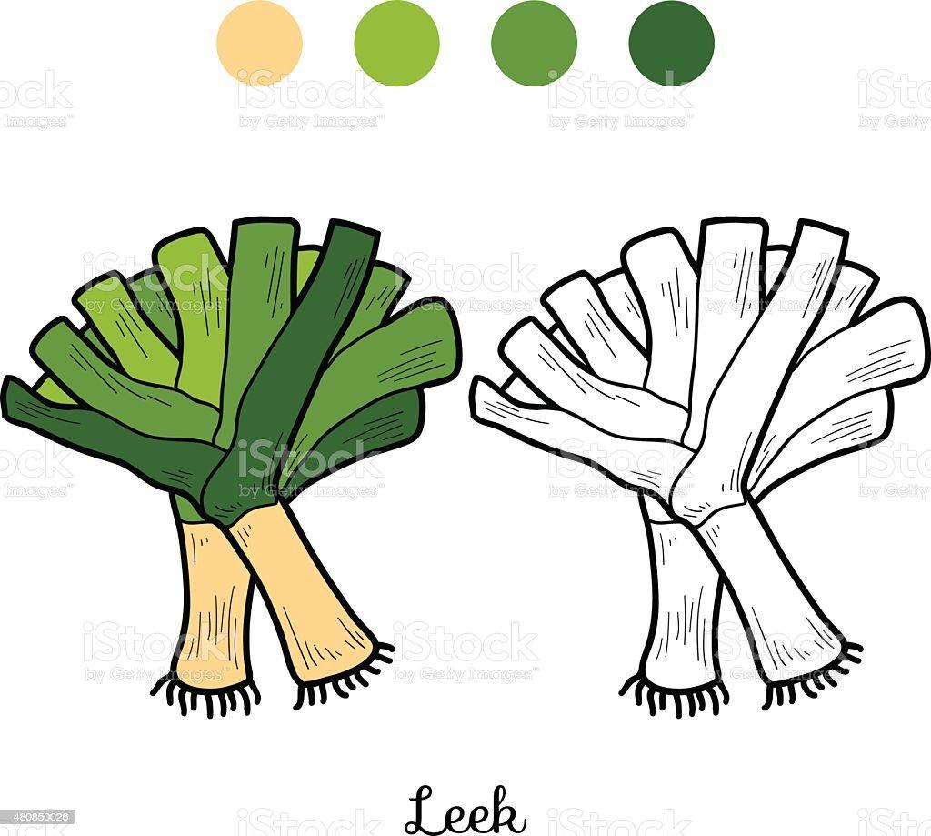 Coloring book: fruits and vegetables (leek) vector art illustration