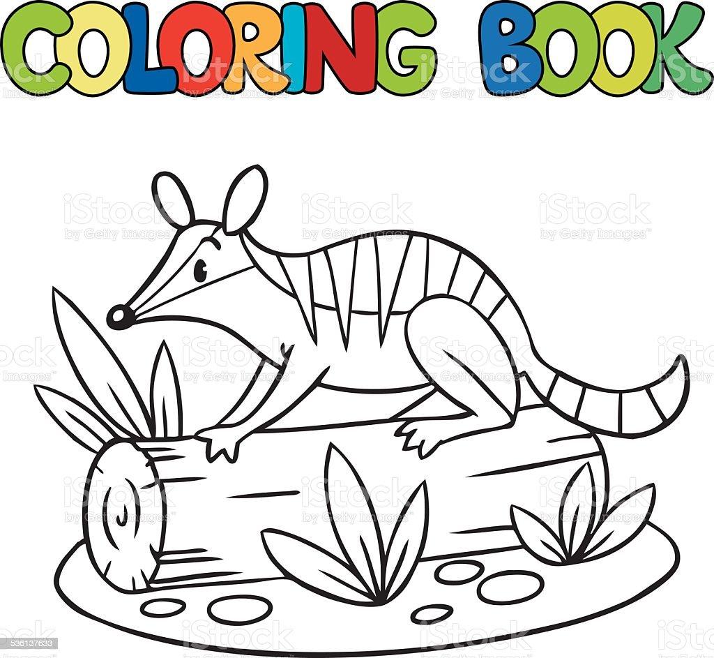 Coloring Book Of Little Numbat stock vector art 536137633 iStock