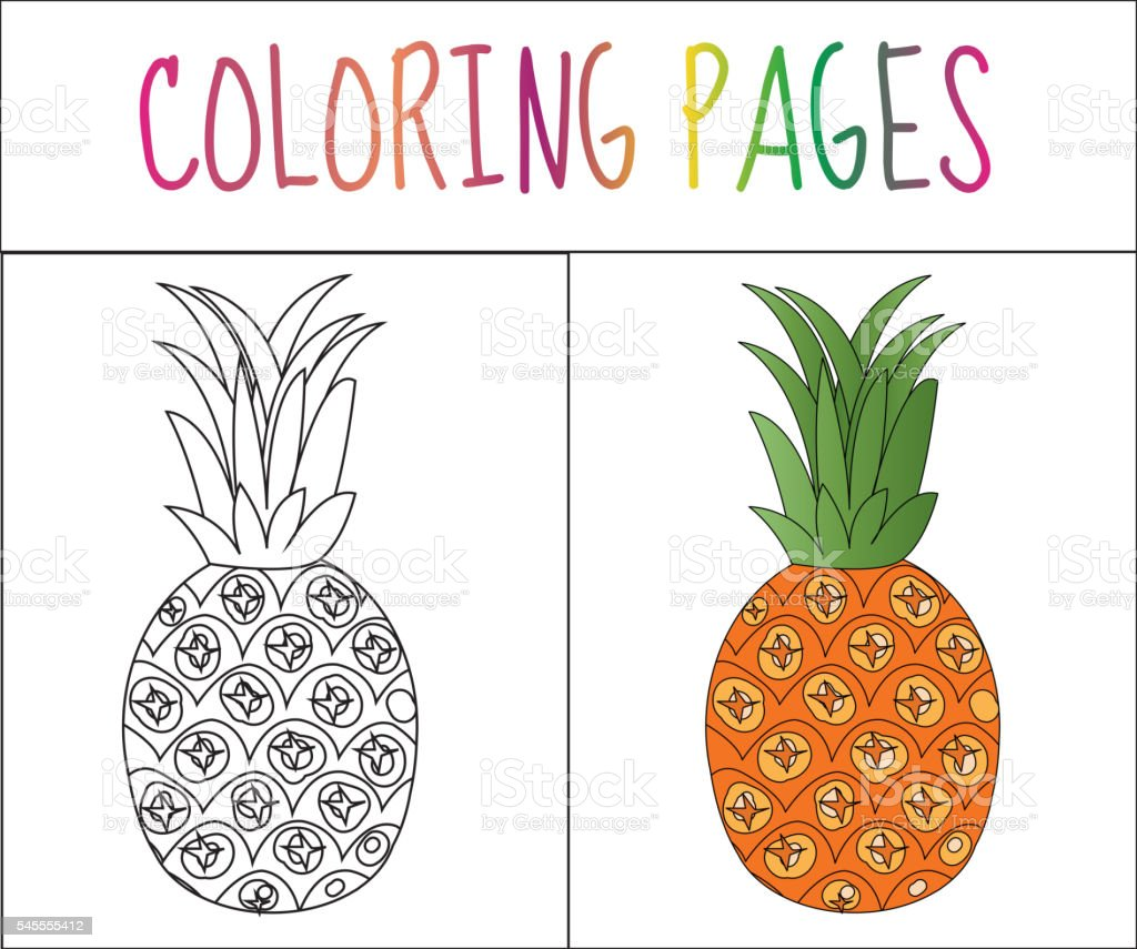 coloring book page pineapple sketch and color version stock vector