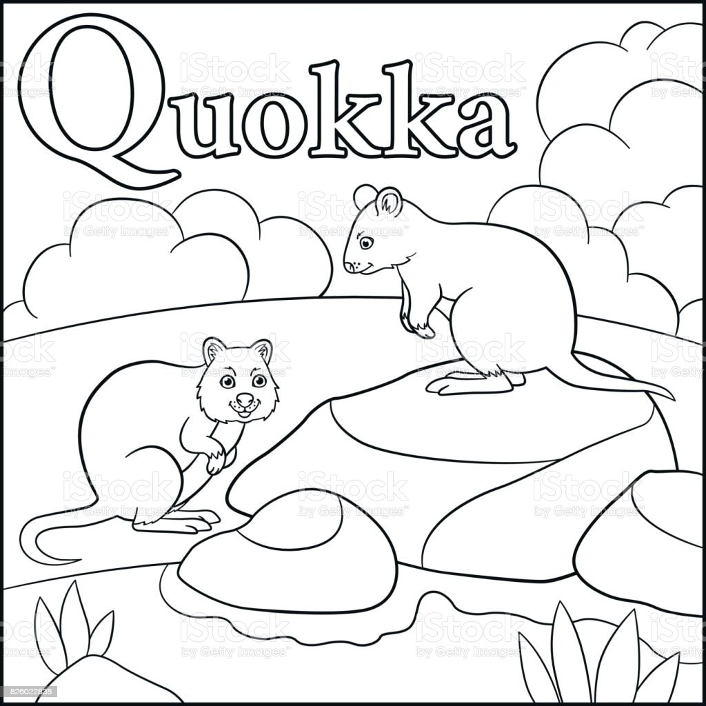 Coloring Page Cartoon Animals Alphabet Q Is For Quokka stock