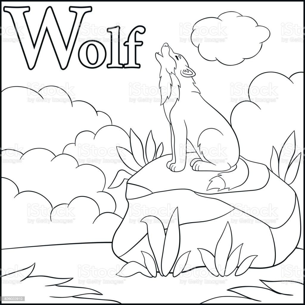 coloring page cartoon animals alphabet w is for wolf stock vector