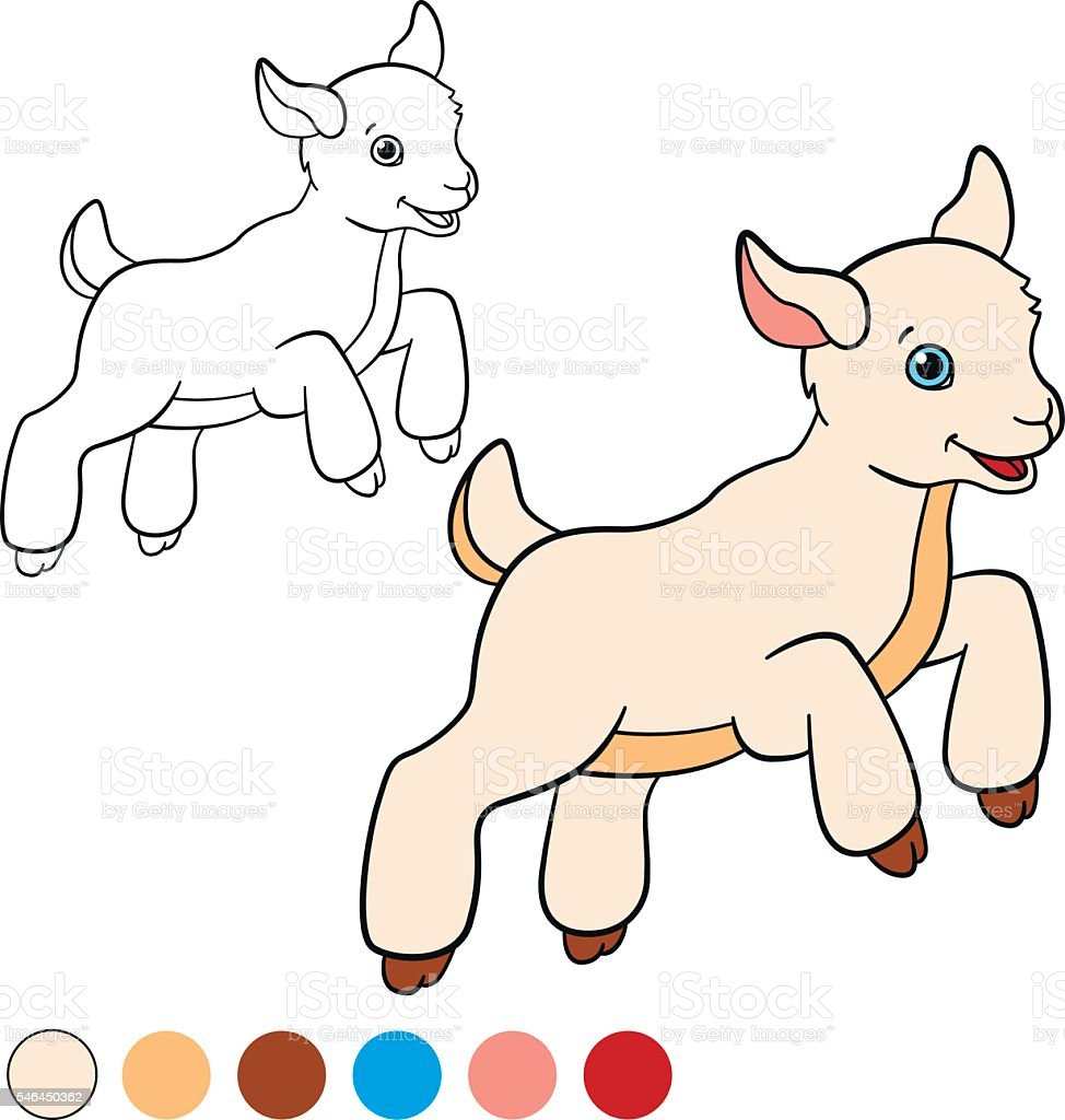 coloring page color me goat little cute baby goat stock vector art