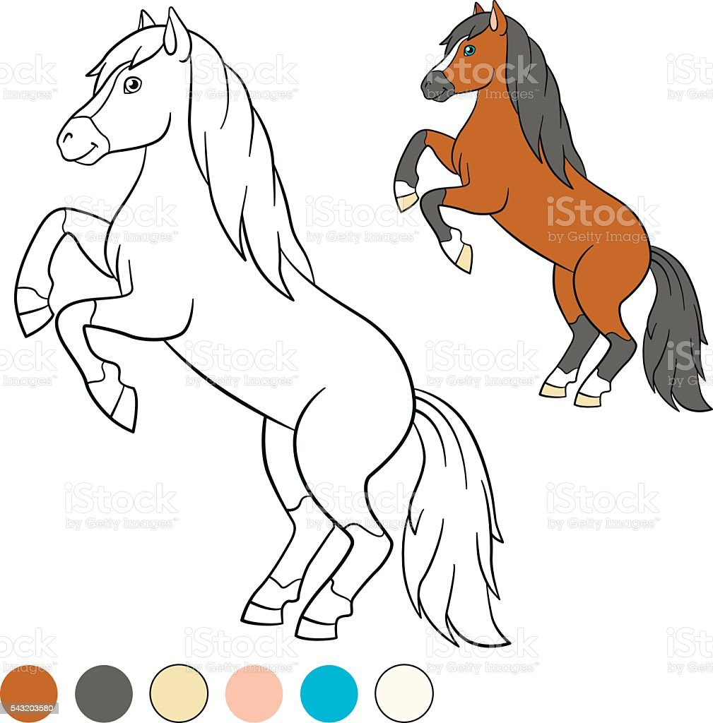 coloring page color me horse beautiful horse stock vector art