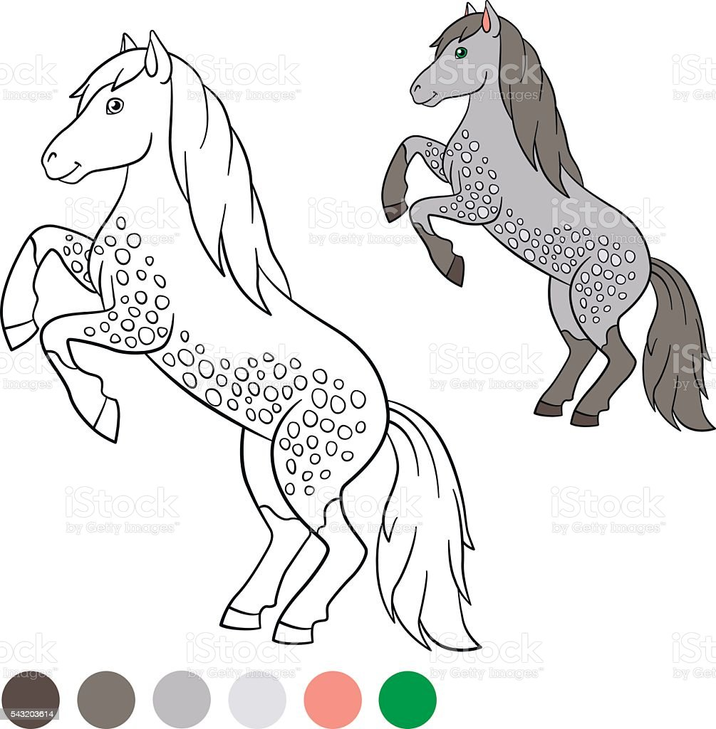 coloring page color me horse cute horse stock vector art 543203614