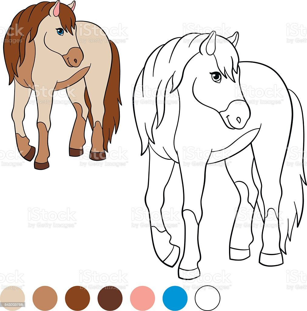 coloring page color me horse cute horse stock vector art 543203758