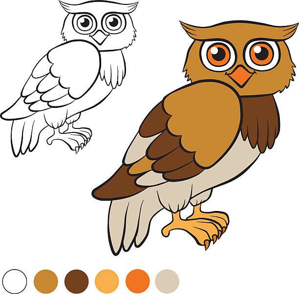 Owl Outline Clip Art, Vector Images & Illustrations - iStock