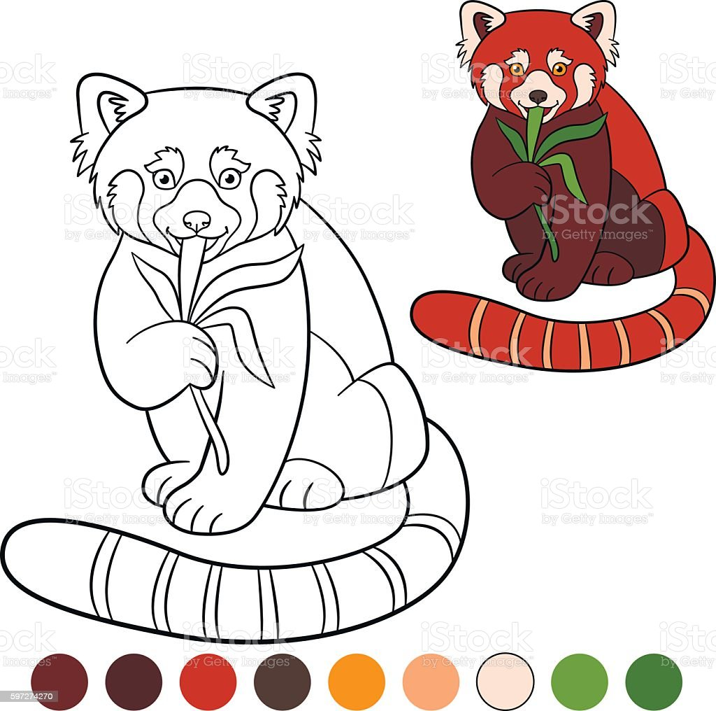 coloring pages mother red panda with her cute baby stock vector