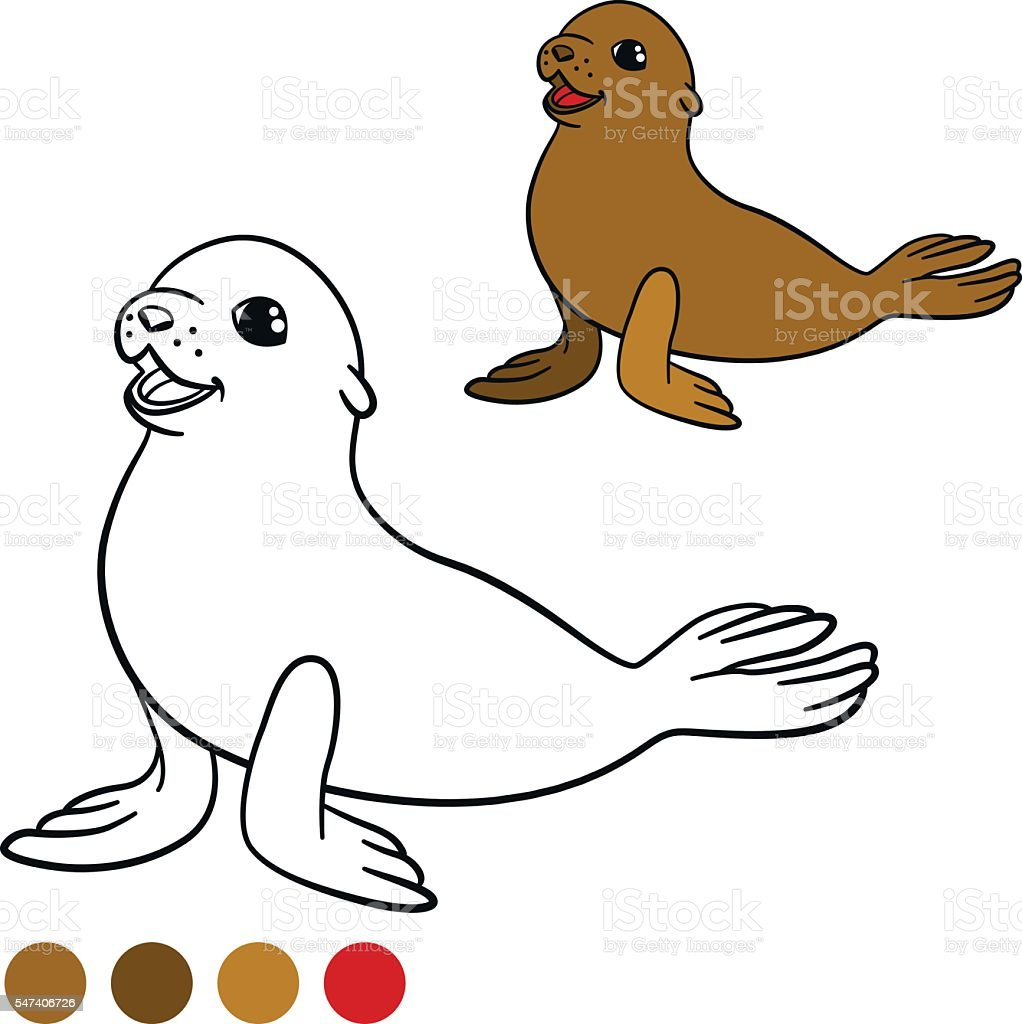 coloring page with colors brown little cute baby fur seal stock