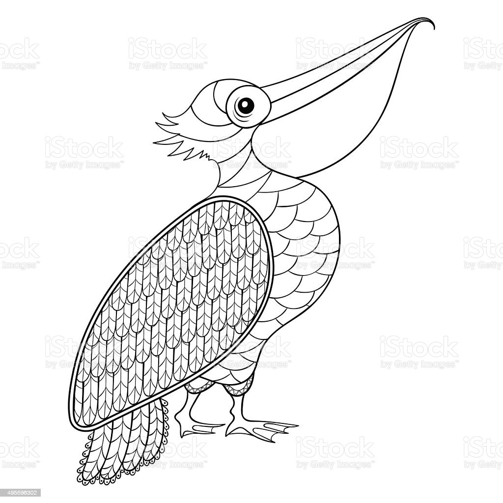 coloring page with pelican illustartion for col stock vector