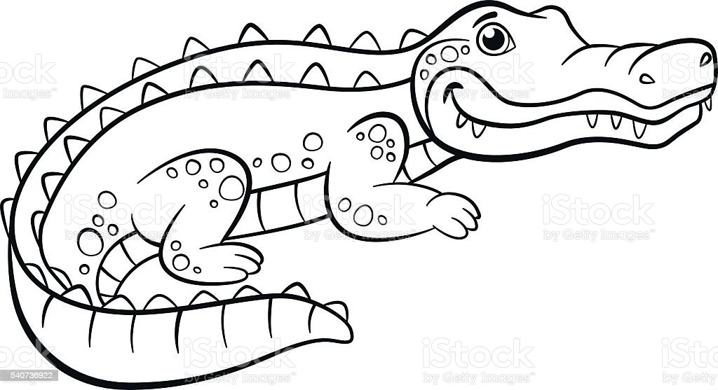Cute Coloring Pages Of AlligatorsColoringPrintable Coloring