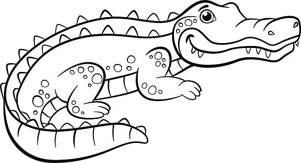 cute alligator drawing clip art, vector images & illustrations ... - Alligator Clip Art Coloring Pages