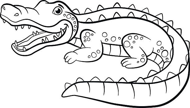 coloring pages animals little cute alligator vector art illustration