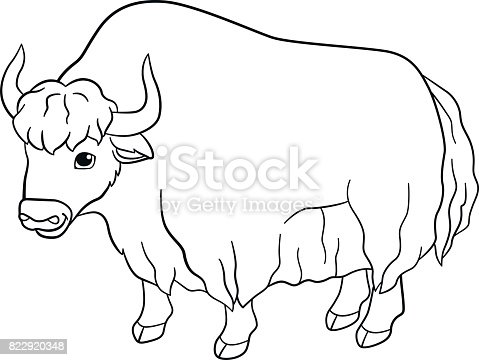 Coloring Pages Cute Beautiful Yak Smiles Stock Vector Art 822920348
