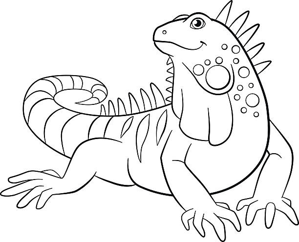 cute iguana vector art illustration coloring pages cute iguana smiles vector art illustration