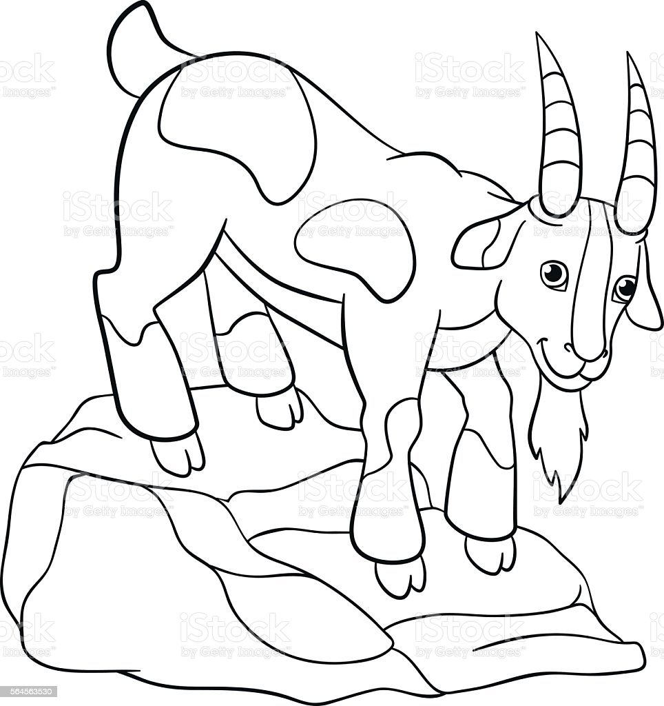 coloring pages farm animals cute billy goat stock vector art