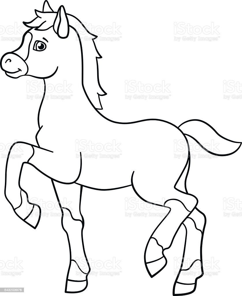 coloring pages farm animals little cute foal stock vector art